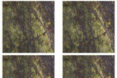 花崗岩 — ストック写真