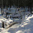 Stream in winter forest — Stock Photo
