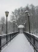 Small bridge. — Stock Photo