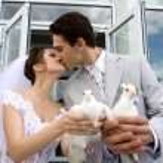 Young newlyweds couple outdoors — Stock Photo