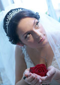 Young beautiful bride with red rose — Stock Photo