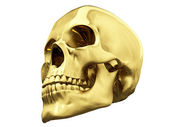Gold skull over white — Stock Photo