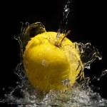 Fresh water splash on yellow apple — Stock Photo