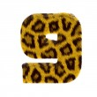 Numeral from tiger style fur alphabet — Stock Photo #1468650