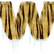 Frosty letter from tiger style fur alpha — Stock Photo #1492239