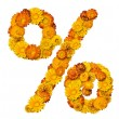 Alphabet from yellow and orange flowers — Stock Photo #1596016