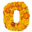 Number from yellow and orange flowers - Stock Photo