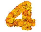 Number from yellow and orange flowers — Stock Photo