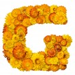 Letters from alphabet from flowers — Stock Photo