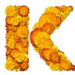 alfabeto dai fiori gialli e arancioni — Foto Stock