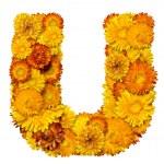 花からアルファベットからの手紙 — ストック写真