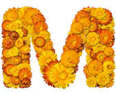 Alphabet from yellow and orange flowers — Stock Photo