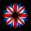 flower with british flag colors on black — Stock Photo