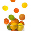 Bowl of fly citrus — Stock Photo
