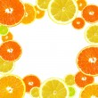 Citrus background — Stock fotografie