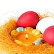 Eggs and candle in a small nest — Stock Photo