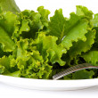 Lettuce on a white plate — Stock Photo