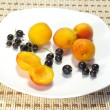 Apricots and currant on a plate - Stock Photo