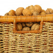 Bakest of nuts on white — Stockfoto