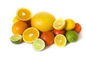Big assortment of citrus — Stock Photo