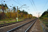 Ferrovia in foresta d'autunno — Foto Stock
