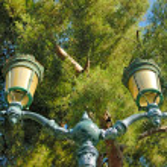 Street lantern — Stock Photo #1158122