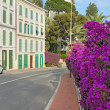 Flower street of the Mediterranean town — Stock Photo