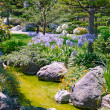 Beautiful garden - Foto Stock