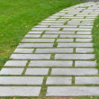 Flagstone walkway — Stock Photo #1159884