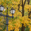 Street lantern on the autumn foliage bac — Stock Photo