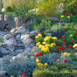 Stock Photo: Decorative flower bed