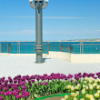 Lamp post and flower bed on quay - Stock Photo
