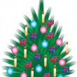 Stock Vector: Christmas pine decoration