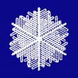 Snowflake on blue background — Stock Vector #1336893
