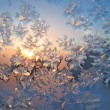 Frost and sun natural texture — Foto Stock