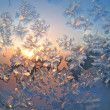 Frost and sun natural texture — Stock Photo #1099557