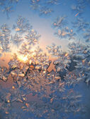Frost and sun natural texture — Stock Photo