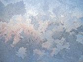 Frost ve damla — Stok fotoğraf