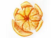 Mandarin isolated on white — Stock Photo