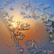 Stock Photo: Frost and sun