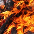 Fire texture - Stock Photo