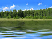 Summer landscape reflected in water — Stock Photo