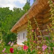 Old  ukrainian house - Stock Photo