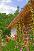 Old ukrainian house — Stock Photo