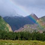 lindo arco-íris acima da floresta — Fotografia Stock  #1390431