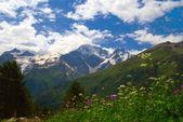 Berget dalen — Stockfoto
