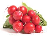 Few raw radishes — Stock Photo