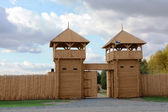 Wooden gate. Fortification — Stock Photo