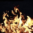 Firestorm - Stock Photo