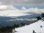 Paisaje de nieve — Foto de Stock